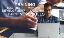 consulting training