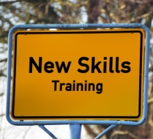 professional services training